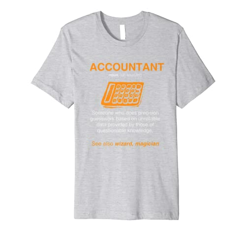 Accountant accounting Lover Funny Gift idea for men women Premium T-Shirt