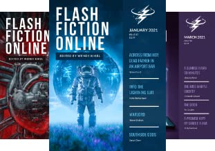 Flash Fiction Online 2021 Issues (5 Book Series)