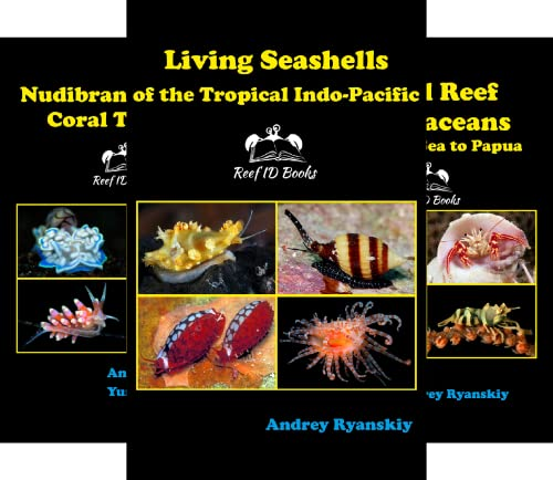 Coral Reef Academy: Indo-Pacific Photo Guides (5 Book Series)