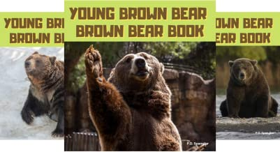 Young Brown Bear & Friends (3 Book Series)