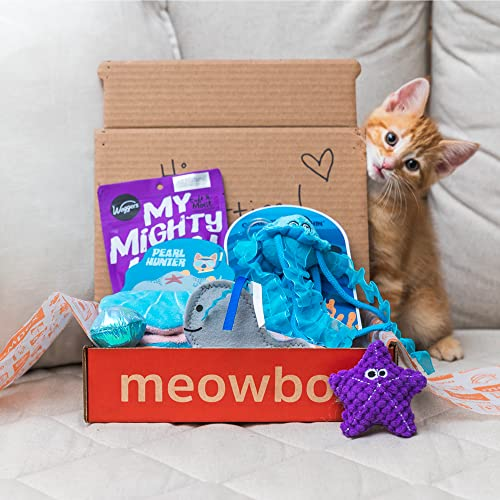 meowbox - the subscription box for cats