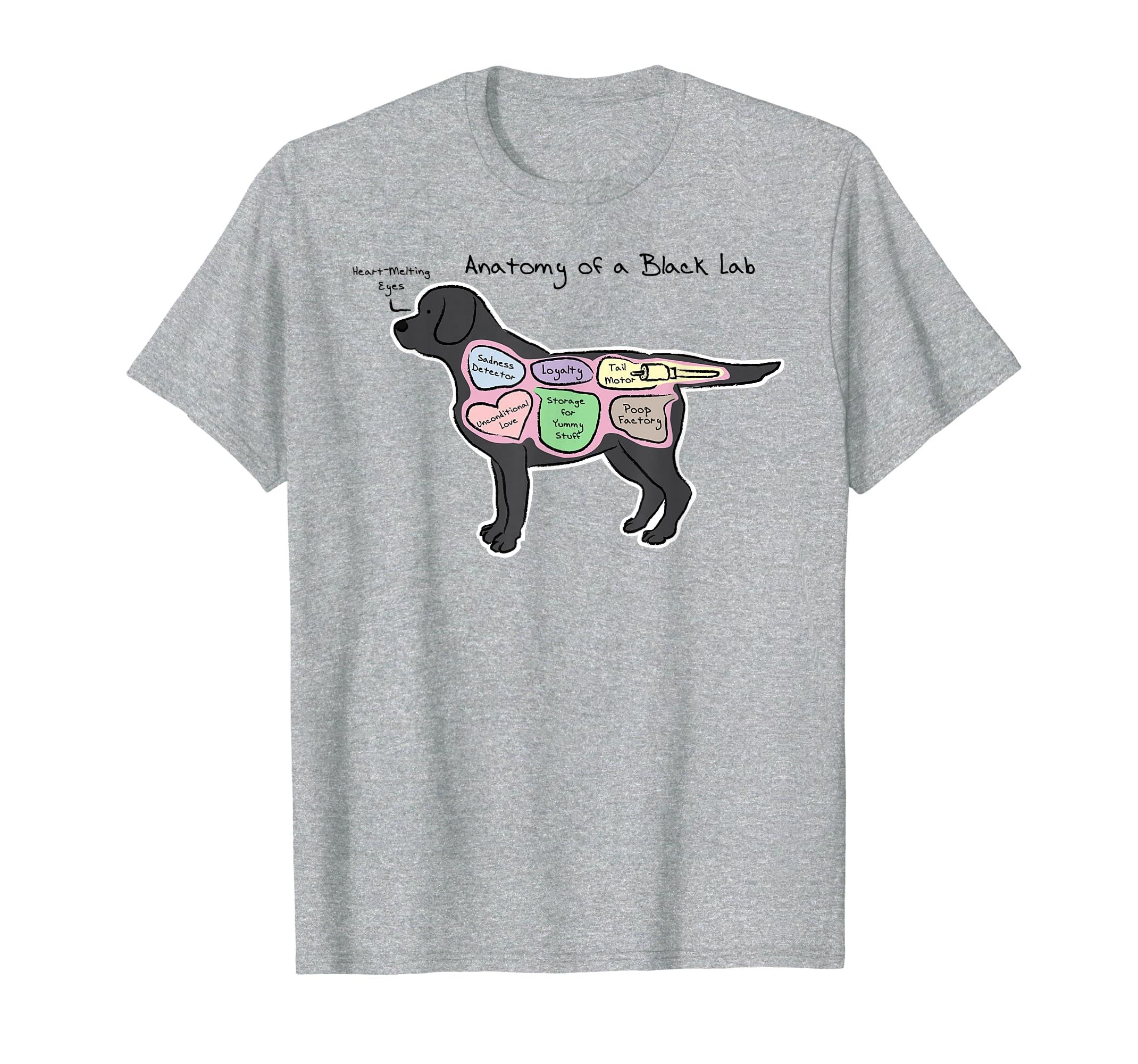 8323b463 Amazon.com: Funny Black Lab T-shirt - Anatomy of a Black Lab: Clothing
