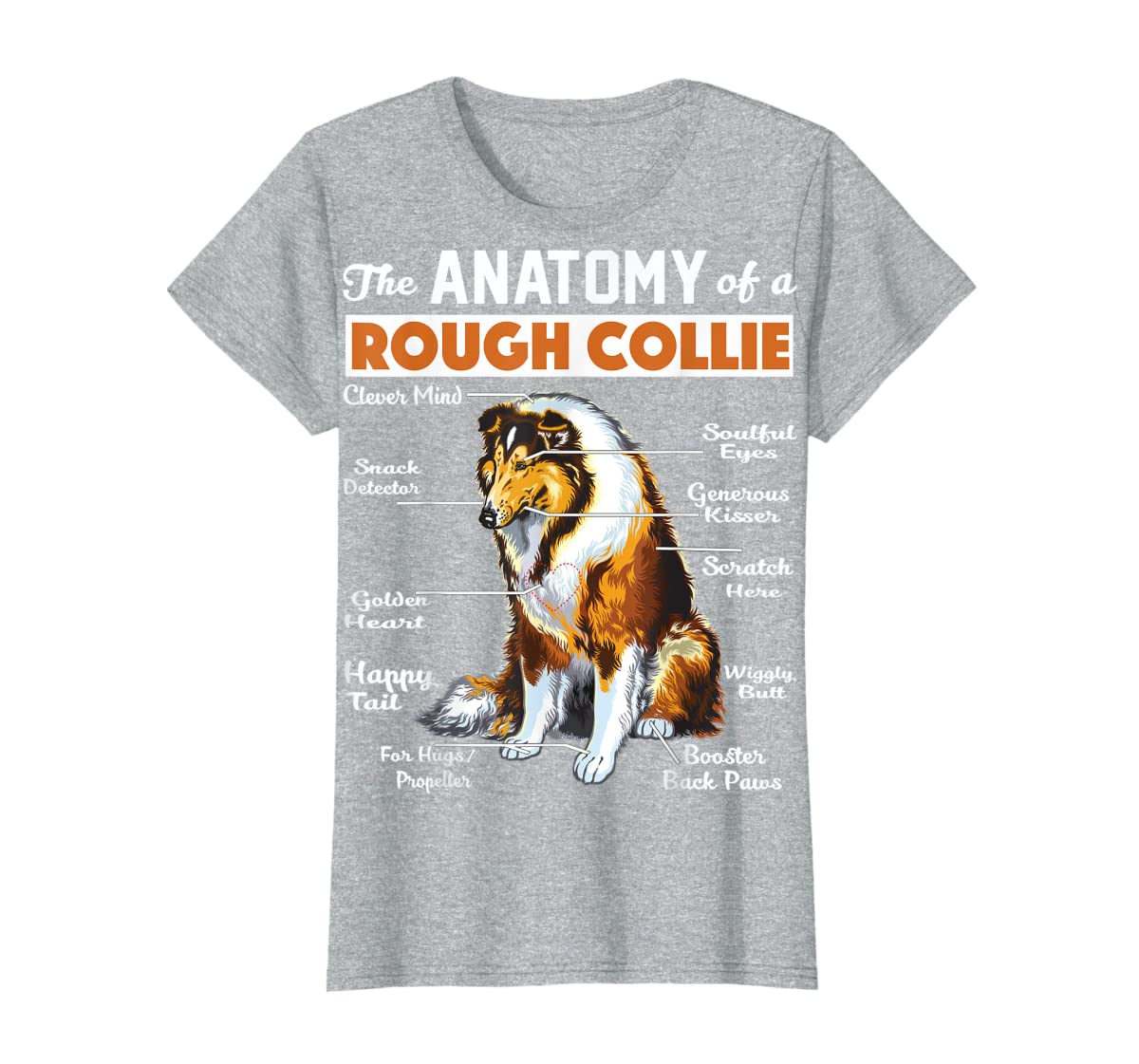 The Anatomy Of A Rough Collie-Women's T-Shirt-Sport Grey