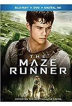 The Maze Runner: Finding the Gang
