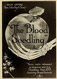 Downloaded free movie The Blood Seedling [h264]