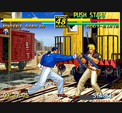 Art Of Fighting 3 The Path Of The Warrior 1996