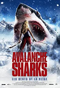 Primary photo for Avalanche Sharks