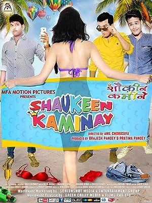 Shaukeen Kaminay movie, song and  lyrics