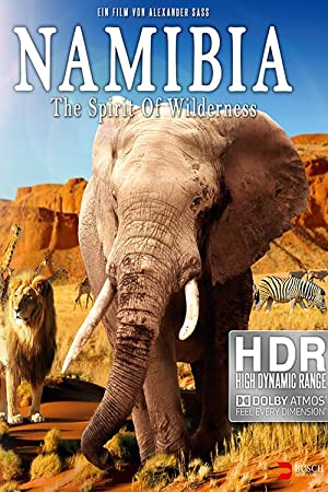 Namibia-The-Spirit-of-Wilderness-2016-DOCU-2160p-BluRay-x265-10bit-SDR-DTS-HD-MA-TrueHD-7-1-Atmos-SWTYBLZ