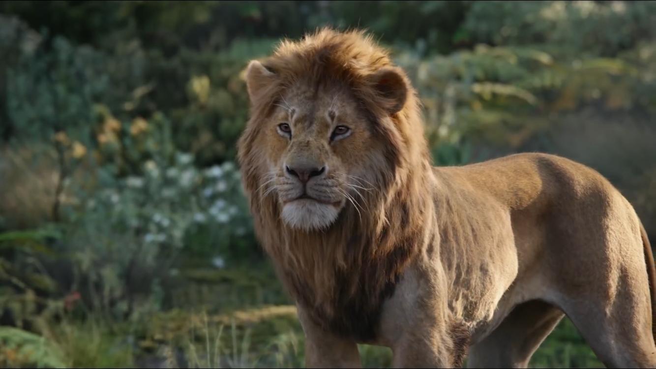 Regele Leu - The Lion King (2019) Online Subtitrat in Romana