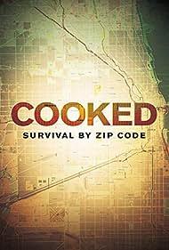 Cooked: Survival by Zip Code (2019)