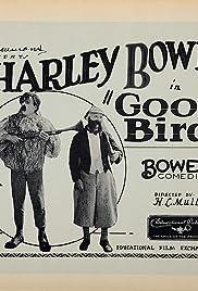 Goofy Birds Poster