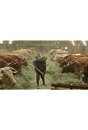 FNSEA: Enquête sur empire agricole