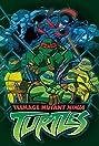 Teenage Mutant Ninja Turtles (2003) Poster