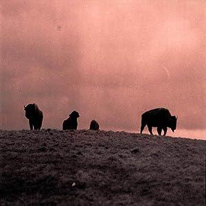 Téléchargement de la série de films Buffalo Dreams, Maurice O'Brien [iPad] [720p] (2013)