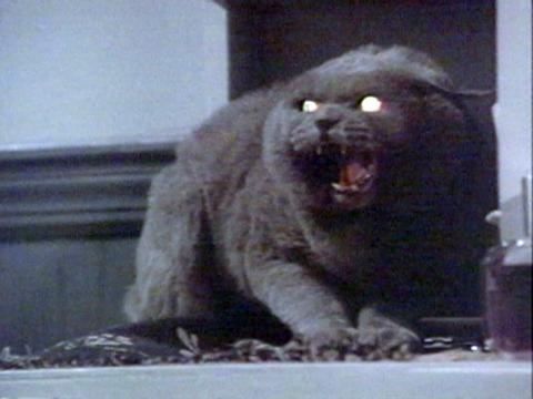 Pet Sematary (1989) - IMDb