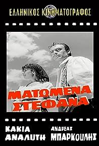 Primary photo for Matomena stefana