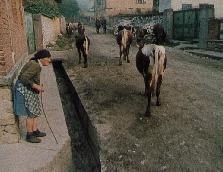 Gratian: The Real life Romanian Werewolf (1995)