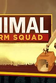 Animal Storm Squad Poster