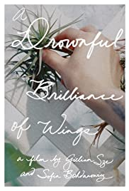 A Drownful Brilliance of Wings Poster
