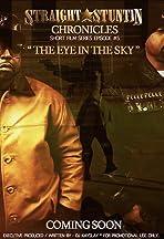 Straight Stuntin Chronicles Volume 5 the Eye in the Sky