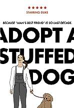 Adopt a Stuffed Dog