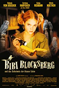 Primary photo for Bibi Blocksberg and the Secret of Blue Owls
