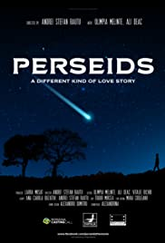 Perseids Poster