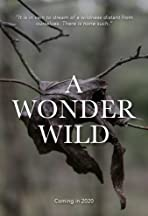 A Wonder Wild