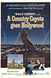 Movie downloading website A Country Coyote Goes Hollywood USA [h.264]