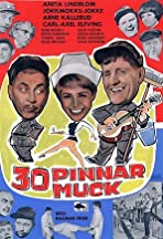 30 pinnar muck