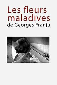Primary photo for Les fleurs maladives de Georges Franju