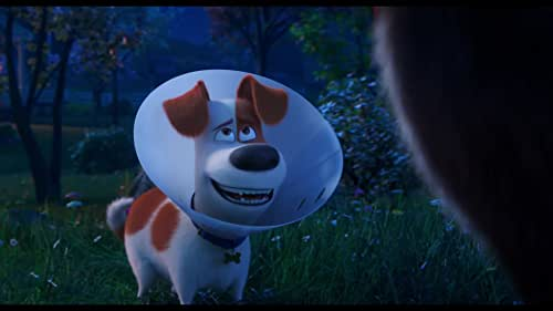 See the final trailer for 'The Secret Life of Pets 2' - in theaters June 7, 2019.