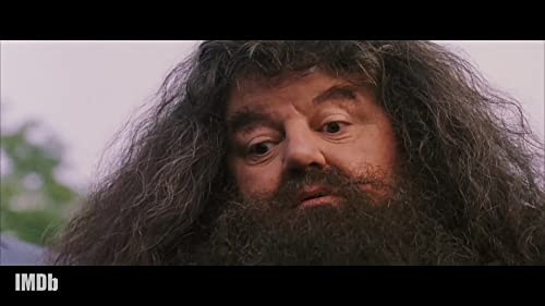 Rubeus Hagrid: Potter's Friendliest Giant