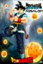 Dragon Ball Absalon (2012) Poster