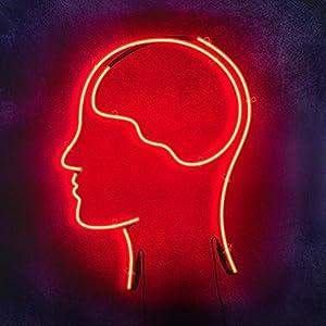 Watch netflix outside us Smarter Every Day - We Ate Goat Brains [480p] [mp4] [480x272], Destin Sandlin