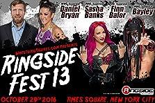 WWE at Ringside Fest (2016 Video)