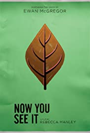 Now You See It Poster