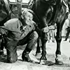 Randolph Scott in A Lawless Street (1955)