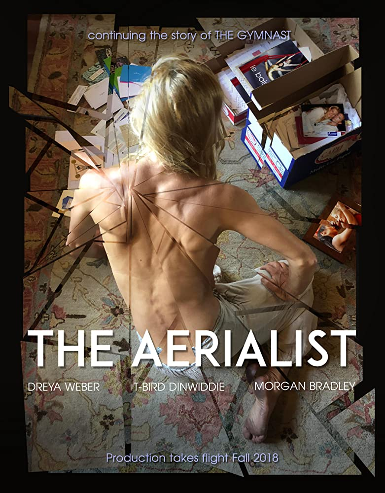 The Aerialist 2020 English 720p HDRip 800MB ESubs