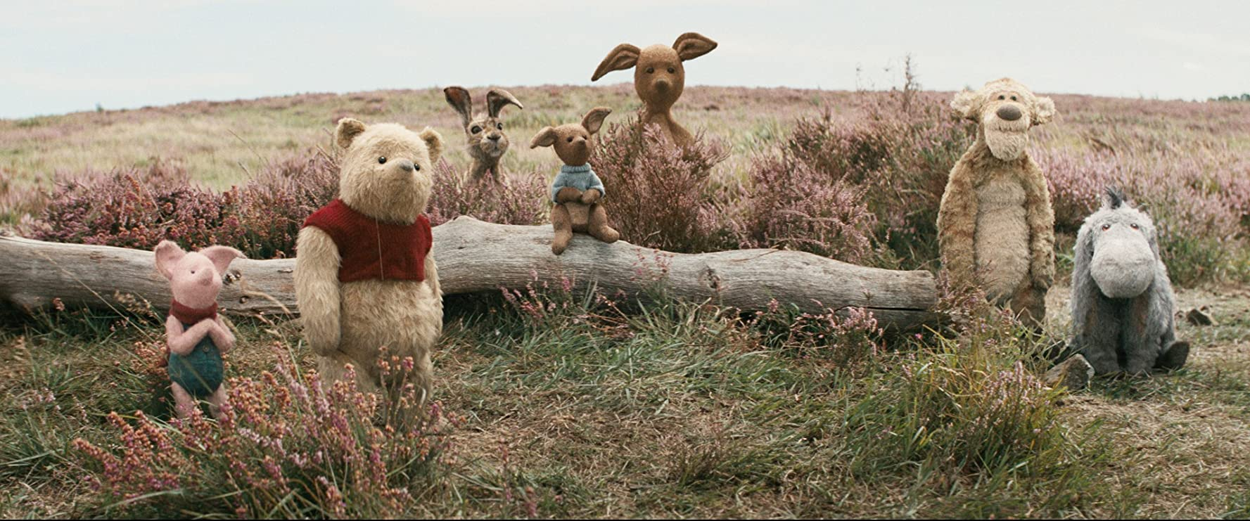 Christopher Robin Image 1