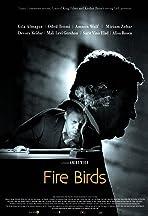 Fire Birds