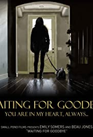 Waiting for Goodbye Poster