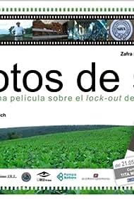 Porotos de soja (2009)