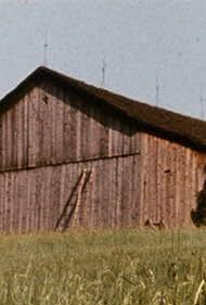 Barn Rushes (1971)