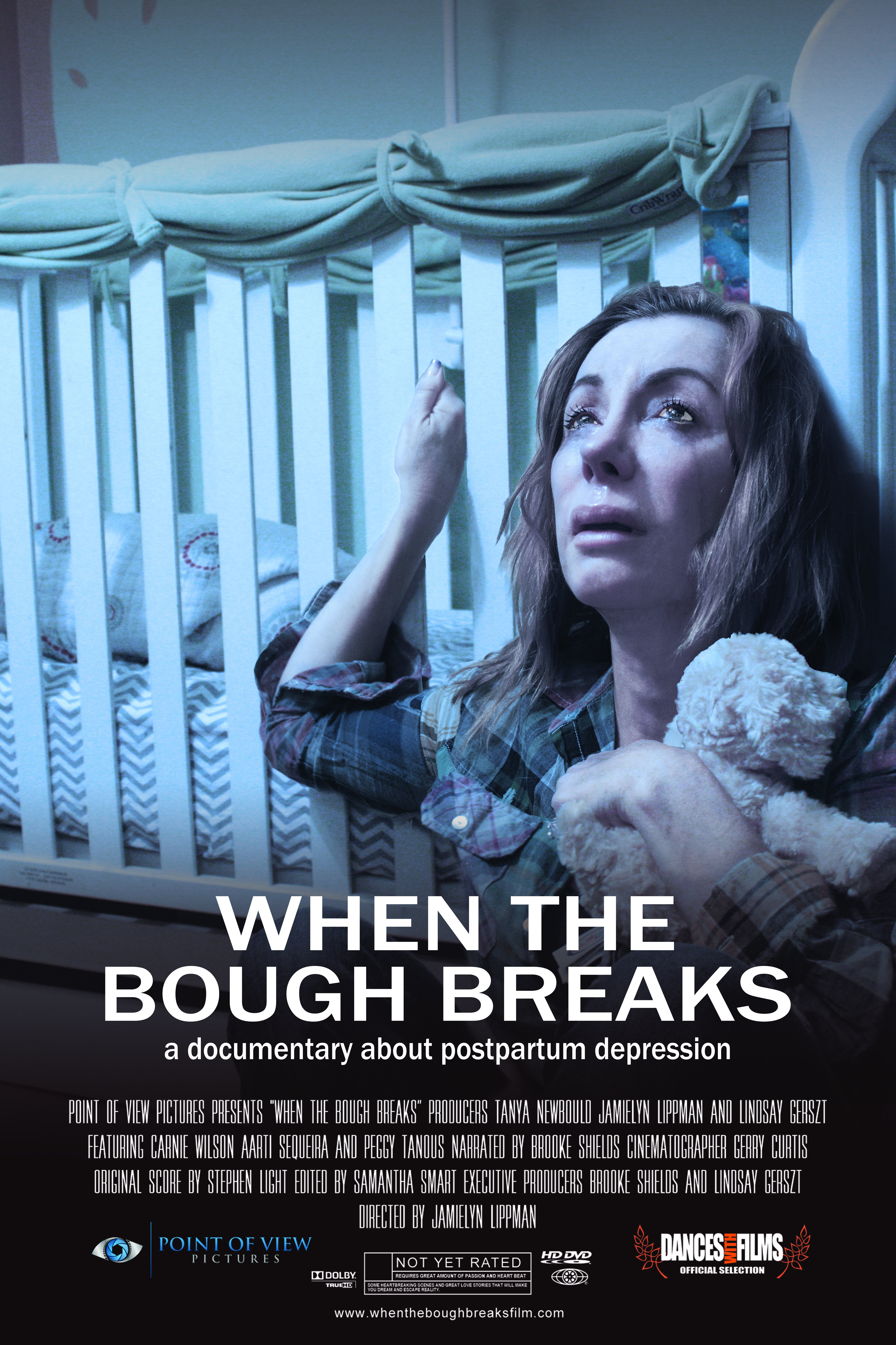 when the bough breaks a documentary about postpartum depression