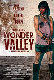 Wonder Valley Poster