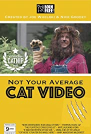 Not Your Average Cat Video Poster