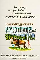 Napoleon and Samantha (1972) Poster