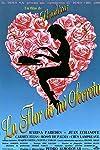 The Flower of My Secret (1995)